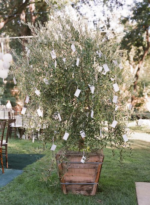 rituel cérémonie laique mariage